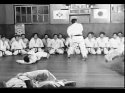 Karate između sporta i načina života