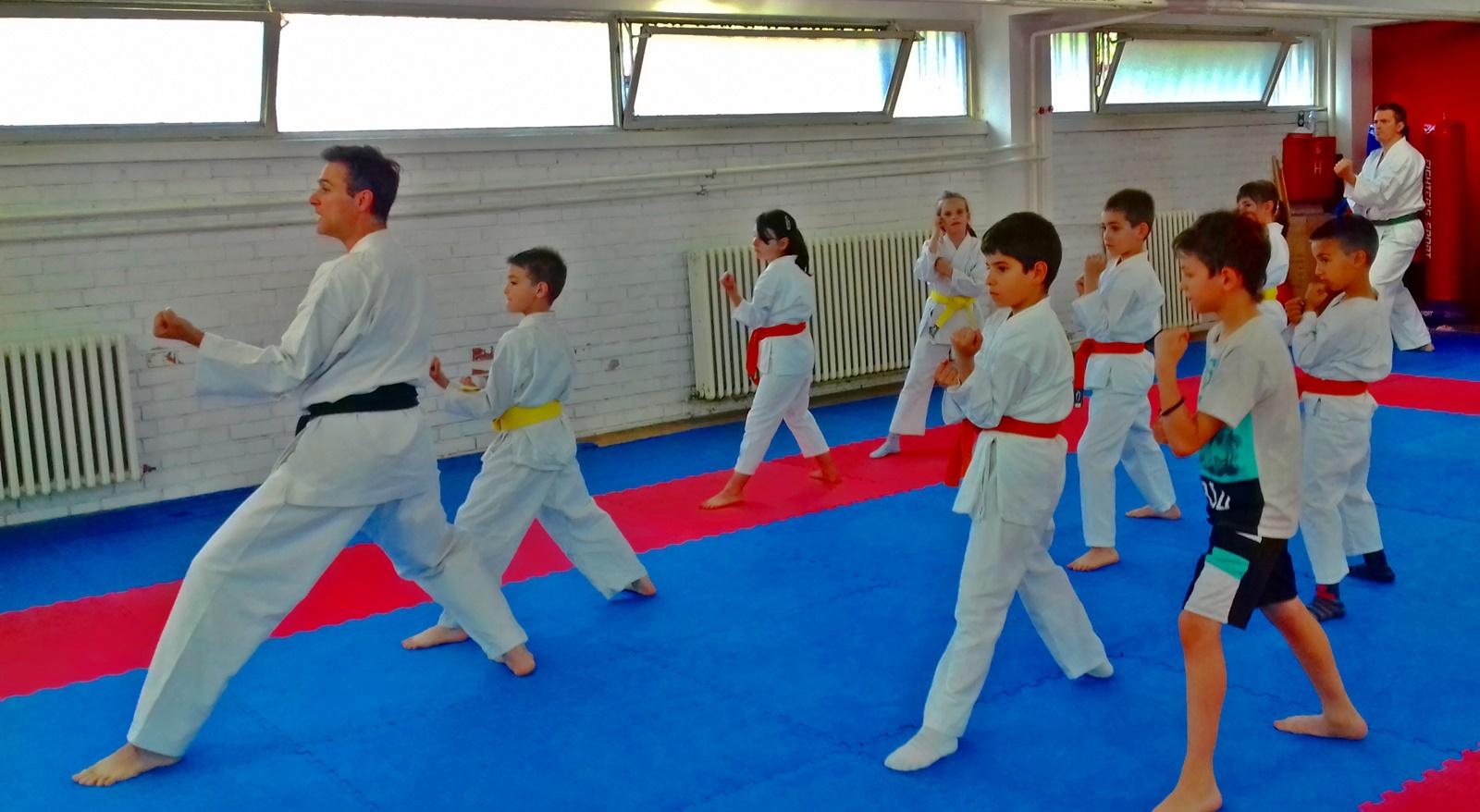 Karate jača zdravlje vašeg deteta