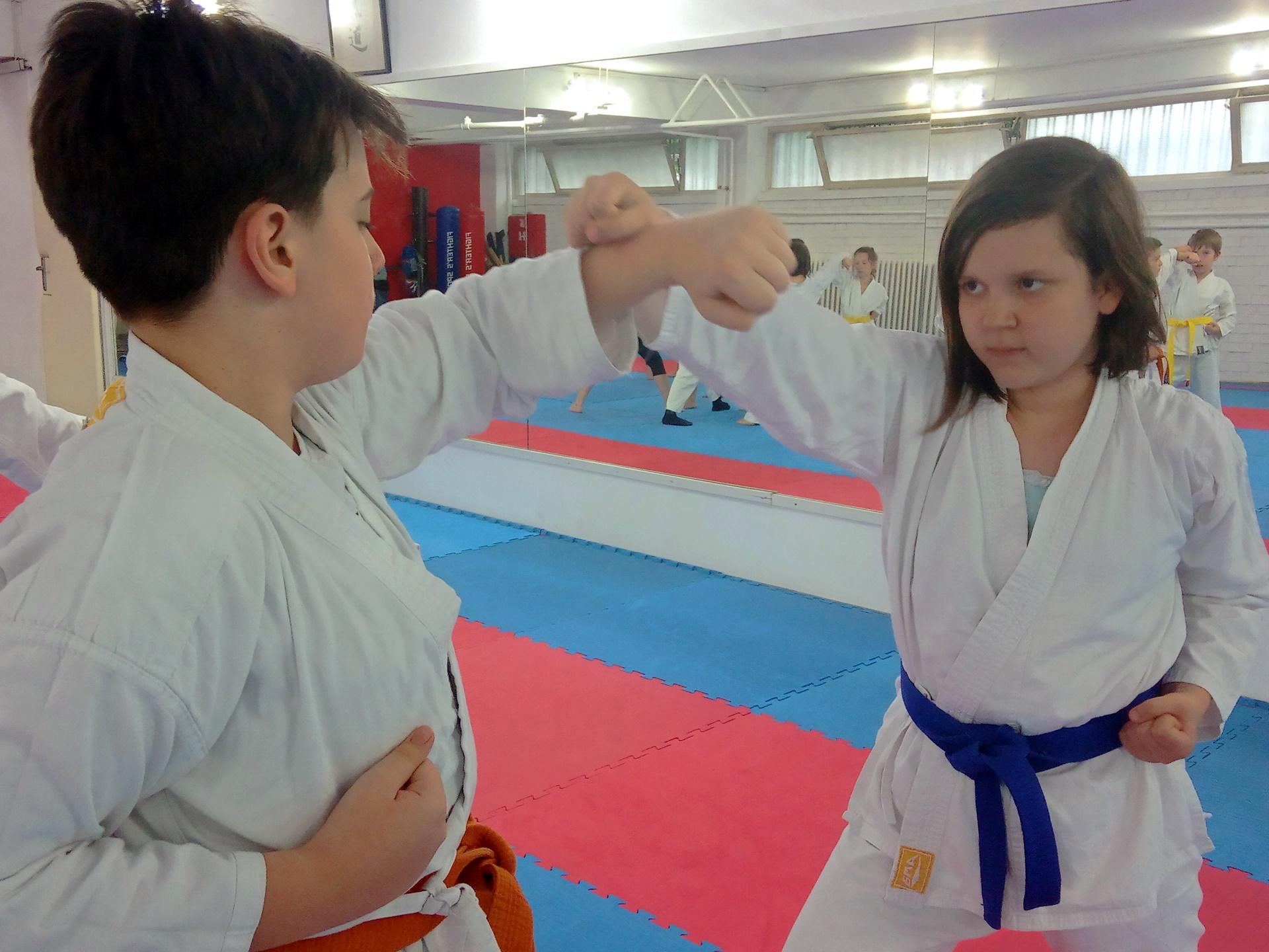 6 Važnih razloga zašto karate za decu