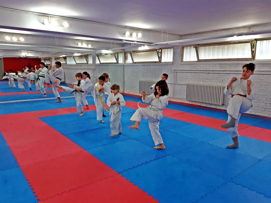 karate bg vrapci